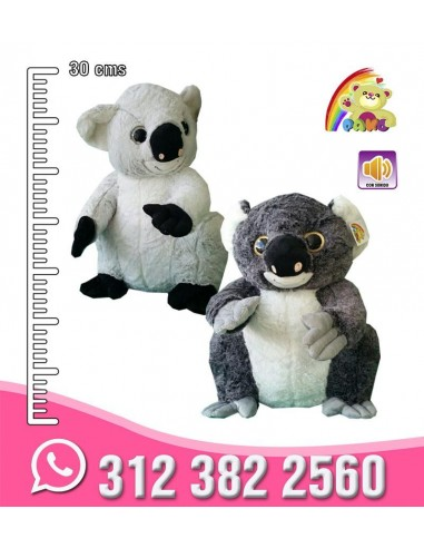Koala Pequeño